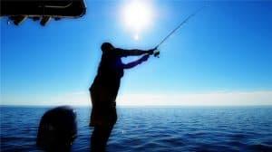 Bottom Fishing Soft Plastics