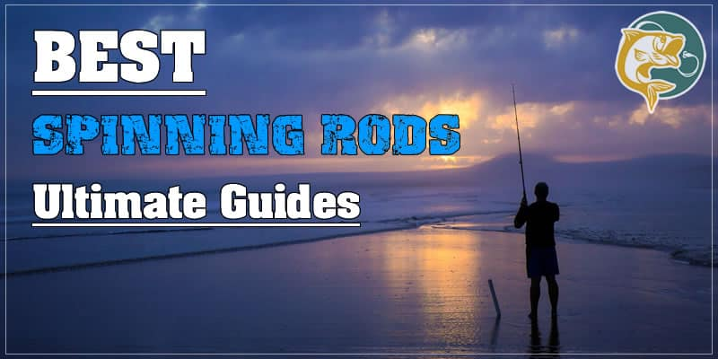 10 best SPINNING RODS