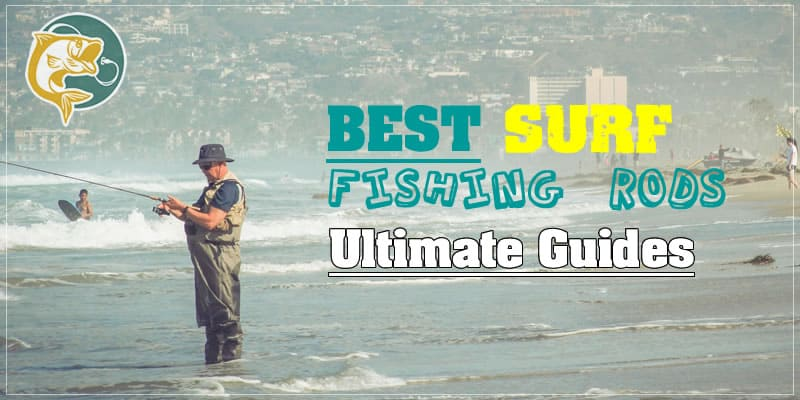 Top 3 Best Surf Fishing Rods 2019 | LureMeFish