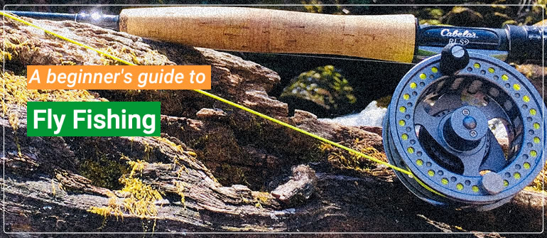 fly fishing beginner's guide