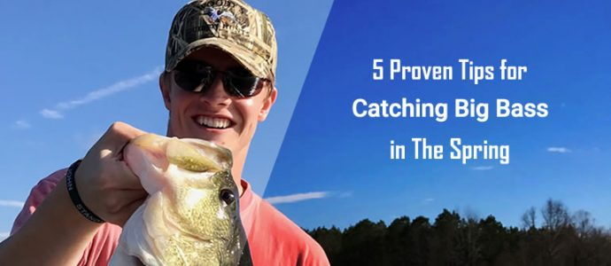 spring bass fishing tips